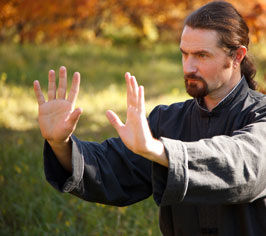 Dragon Fist Kung Fu and Tai Chi